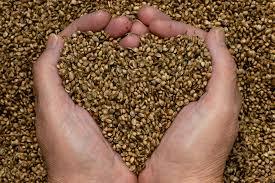 handfull of seeds