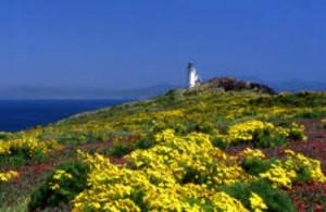 Anacaupa Island Lighthouse, CA, photo courtesy nps.gov.